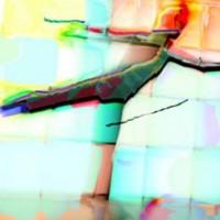 Digital painting • 50x75cm • afwerking dibond-acryl/perspex • andere formaten of aluminium-dibond in overleg• serie: In beweging