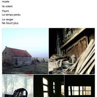 Grace van den Dobbelsteen tekst en beeld Proza-achtige teksten Beeldende kunst en tekstschrijver Tilburg 2