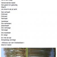 Grace van den Dobbelsteen tekst en beeld Proza-achtige teksten Beeldende kunst en tekstschrijver Tilburg 7