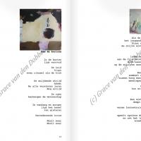 Proza achtige teksten, lijkend op gedichten, op poëzie vd Dobbelsteen is kunstenaar in Tilburg