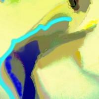 Digitale kunst • 50x75 • dibond-aluminium / perspex = met toplaag van perspex • serie: In beweging •andere formaten of op aluminium-dibond in overleg